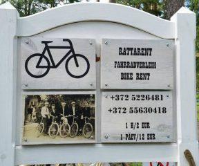Jalgratta+rent+Võsul_002_